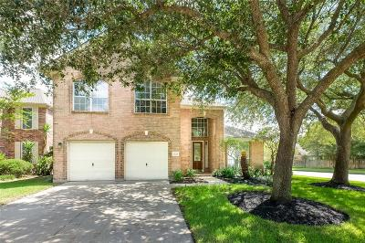 Katy Single Family Home For Sale: 1223 Irish Mist Court