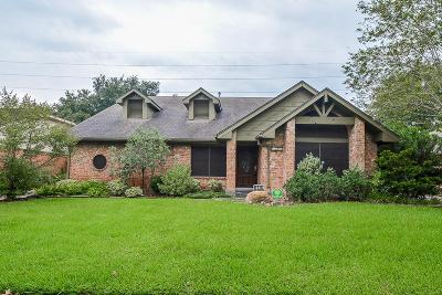 Sugar Land Single Family Home For Sale: 2718 Pineleaf Drive