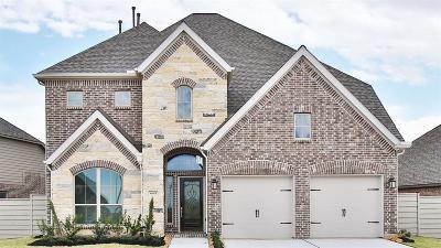 Manvel Single Family Home For Sale: 4609 Mesquite Terrace Drive