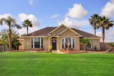Alvin Single Family Home For Sale: 17931 Fir Road