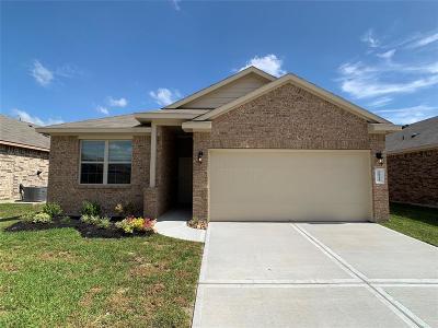 Harris County Single Family Home For Sale: 20910 Azelea Field Street