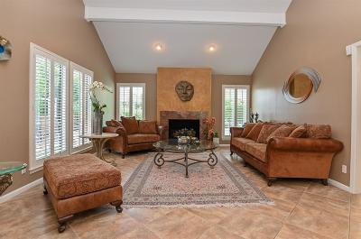 Briargrove Park Single Family Home For Sale: 10211 Sugar Hill Drive