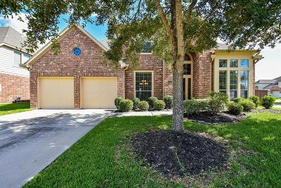 Pearland Single Family Home For Sale: 13601 Orchard Wind Lane