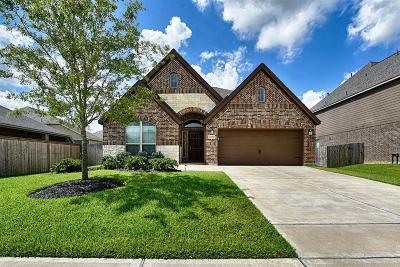 Pearland Single Family Home For Sale: 13502 Canyon Gale Lane