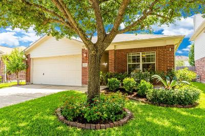 Harris County Single Family Home For Sale: 4818 Cliffpoint Court