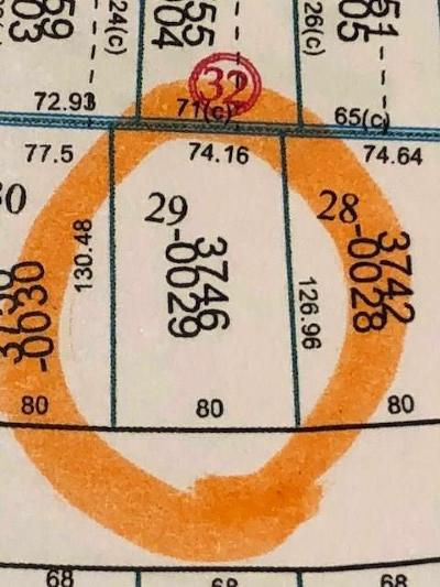 Houston Single Family Home For Sale: 3746 Tartan Lane