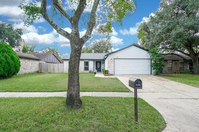 Houston Single Family Home For Sale: 17323 Glenpatti Drive