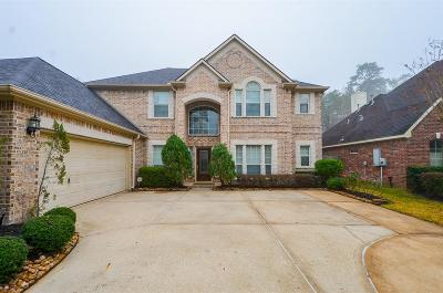 Summerwood Single Family Home For Sale: 14206 Sandhill Crane Drive
