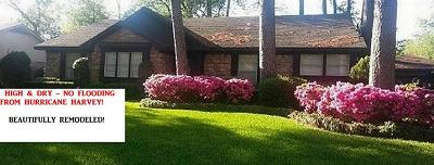 Spring Single Family Home For Sale: 2023 Whispering Springs