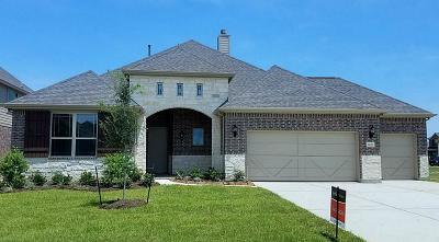 League City Single Family Home For Sale: 3057 Bellflower Pass Lane