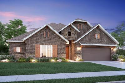 Tomball Single Family Home For Sale: 13614 Tangle Branch Drive