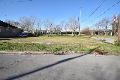 Houston Residential Lots & Land For Sale: 1405 Sydnor Street