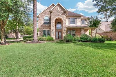 The Woodlands Single Family Home For Sale: 14 N Bardsbrook Circle