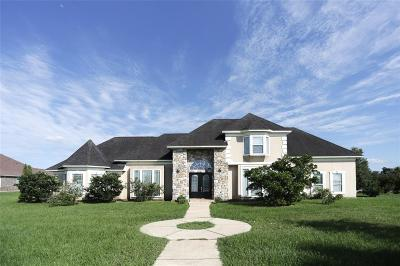 Richmond Single Family Home For Sale: 13819 Lakeview Meadow Drive