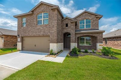 Katy Single Family Home For Sale: 29707 Breakwater Drive