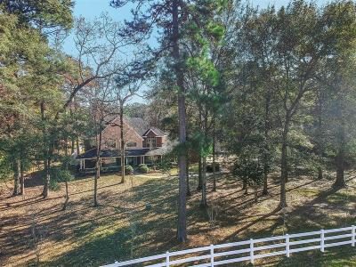 Conroe Single Family Home For Sale: 14733 Old Conroe Road
