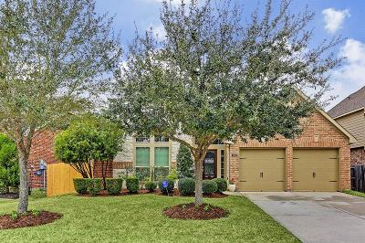 Pearland Single Family Home For Sale: 2614 Briar Rose Court