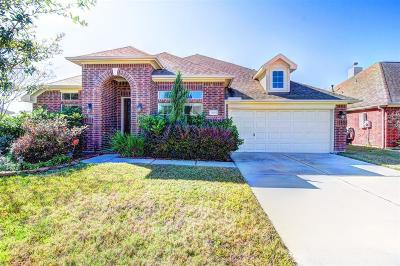 Tomball Single Family Home For Sale: 13003 Northwood Glen Lane