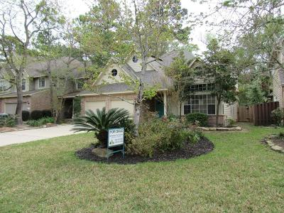 The Woodlands Single Family Home For Sale: 80 E Lakeridge Drive