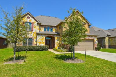 Manvel Single Family Home For Sale: 2819 E Trailblazer Lane