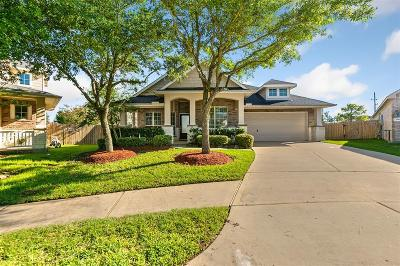Pearland Single Family Home For Sale: 2302 Shadow Falls Lane
