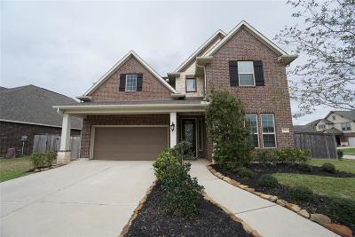Missouri City Single Family Home For Sale: 9919 Foggy River Court