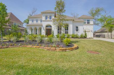 Tomball Single Family Home For Sale: 102 S Curly Willow Circle