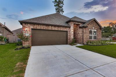 Humble Single Family Home For Sale: 10302 Eagle Hollow Drive