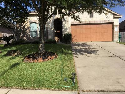 Porter Single Family Home For Sale: 22439 Toronado Ridge Lane