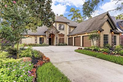 The Woodlands Single Family Home For Sale: 114 E Shadowpoint Circle