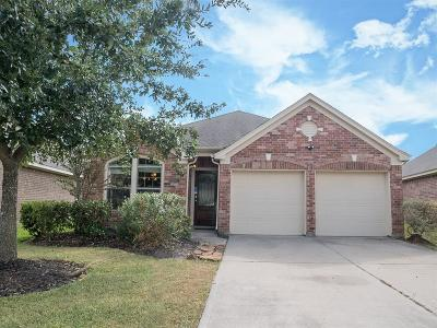 Tomball Single Family Home For Sale: 18907 Pinewood Point Lane