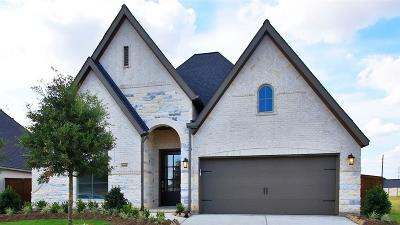 Katy Single Family Home For Sale: 6914 Red Oak Drive