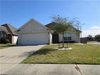 Houston Single Family Home For Sale: 12107 Donegal Way