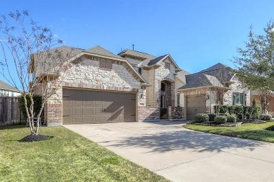 Katy Single Family Home For Sale: 27802 Merchant Hills Lane
