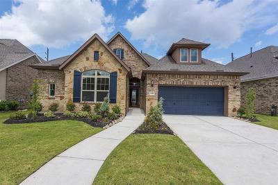 Manvel Single Family Home For Sale: 4410 Bayberry Ridge Lane