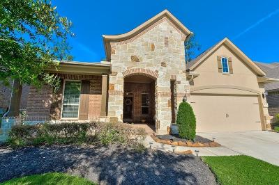 The Woodlands Single Family Home For Sale: 6 Inland Prairie Drive