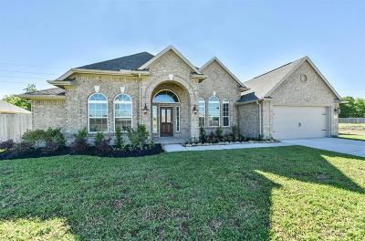 Rosharon Single Family Home For Sale: 9211 Granite Canyon Drive