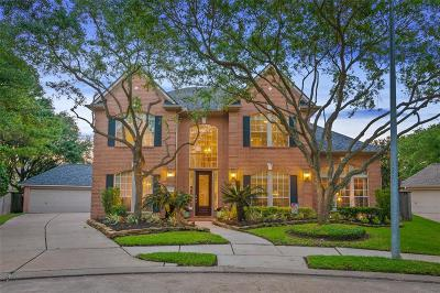 Houston Single Family Home For Sale: 12503 Cherry Creek Bend Lane