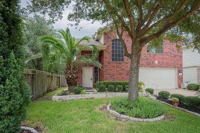 Katy Single Family Home For Sale: 6430 Binalong Drive