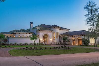 Tomball Single Family Home For Sale: 17408 Champions Lakeway