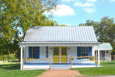New Ulm Farm & Ranch For Sale: 640 Houston Street