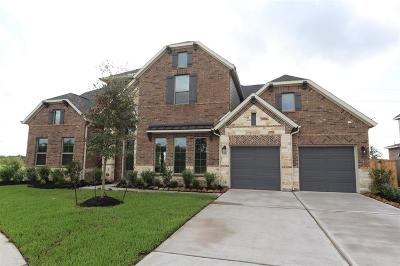 Katy Single Family Home For Sale: 1307 Windy Thicket Lane