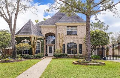 Katy Single Family Home For Sale: 2507 Kelliwood Lakes Drive
