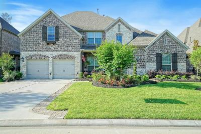 Montgomery Single Family Home For Sale: 114 Stonecrop Place