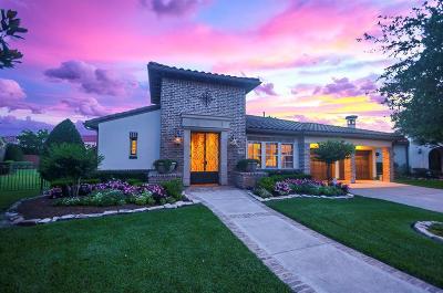 Sugar Land Single Family Home For Sale: 4427 Horizon View Circle