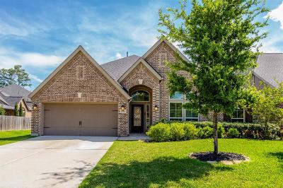 Spring Single Family Home For Sale: 17706 Cypress Berry Drive