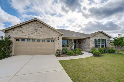 Fort Bend County Single Family Home For Sale: 207 Catclaw