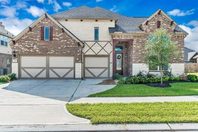 Katy Single Family Home For Sale: 23307 S Briarlilly Park Circle