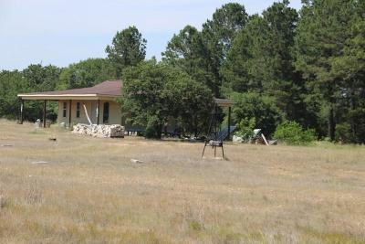 Colorado County Farm & Ranch For Sale: 1429 Vogelsang