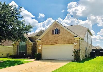 Houston Single Family Home For Sale: 2923 Intrepid Elm Street